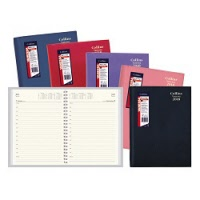 Diary Vanessa A4 Day To Page 2019 Assorted Colour (FS)